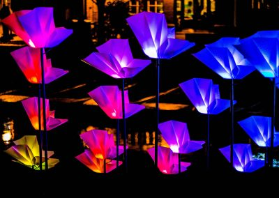 E-Luminate-Festival-Flowers