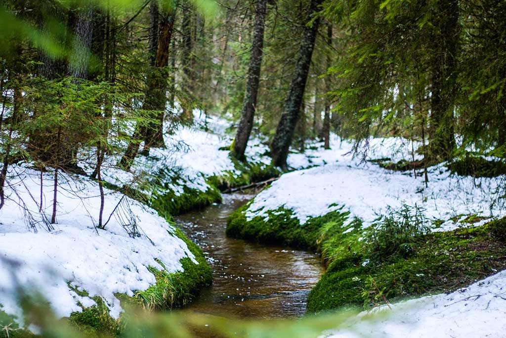 Black Forest Germany – Todtmoos