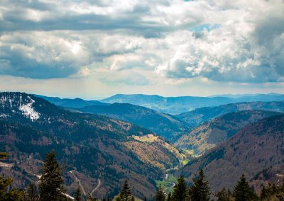 View-of-The-Black-Forest