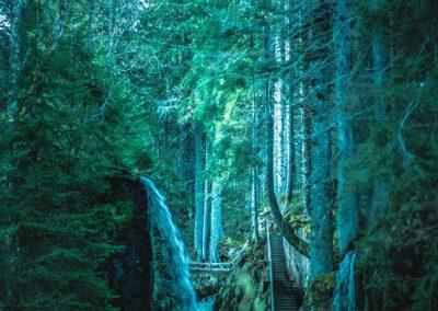 Wild-Waterfall